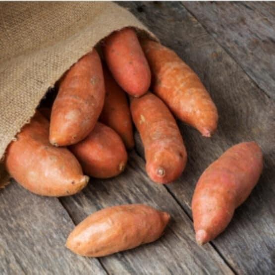 Golden sweet potatoes